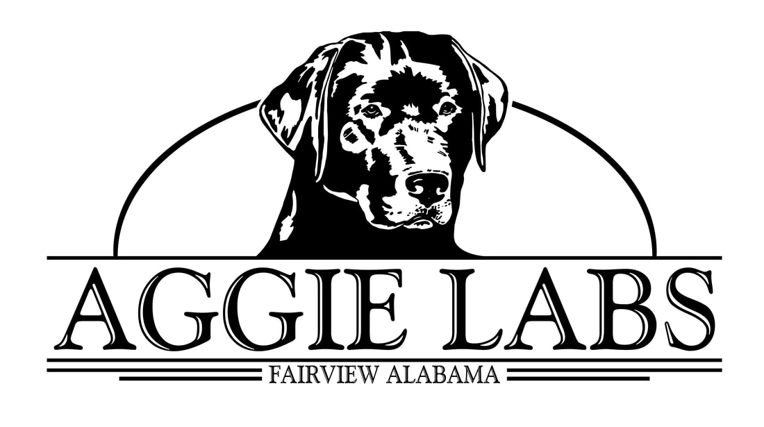 Aggie Labs